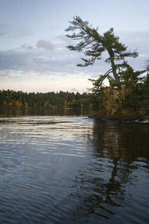 lakeshores: Lakeshore, Lake of the Woods, Ontario, Canada