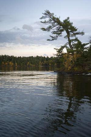 Lakeshore, Lake of the Woods, Ontario, Canada Stock Photo - 7191162