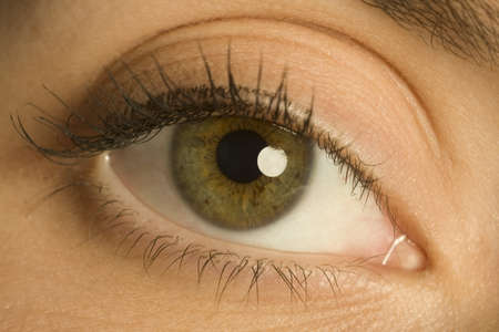 Woman's eye Stock Photo - 7191572