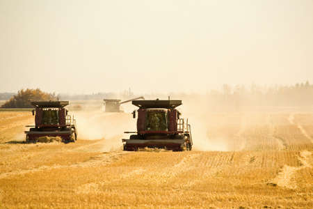 machinery space: Combine harvesting wheat field