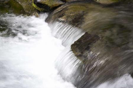 Paradise creek, Mount Rainier National Park, Washington State, USA Stock Photo - 7210802
