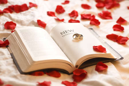 belief system: Rings on the Bible; Wedding rings on the New Testament Bible surrounded by rose petals Stock Photo