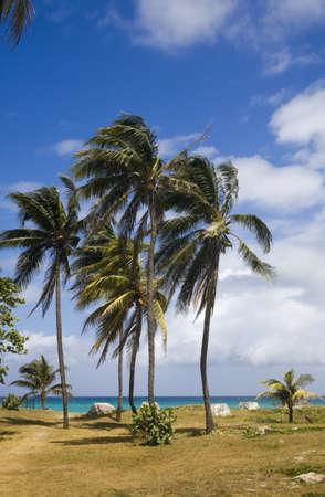 lakefronts: Varadero Beach, Varadero, Cuba