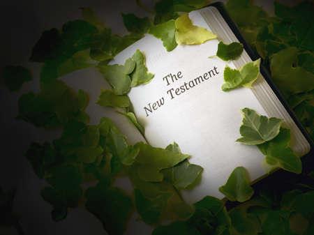 passages: New Testament