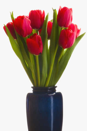 glass vase: Tulips in a vase