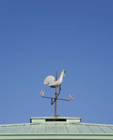 Weathervane, Montreal Botanical Garden; Quebec, Canada photo
