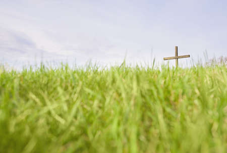 The cross in a field Stock Photo - 7189870