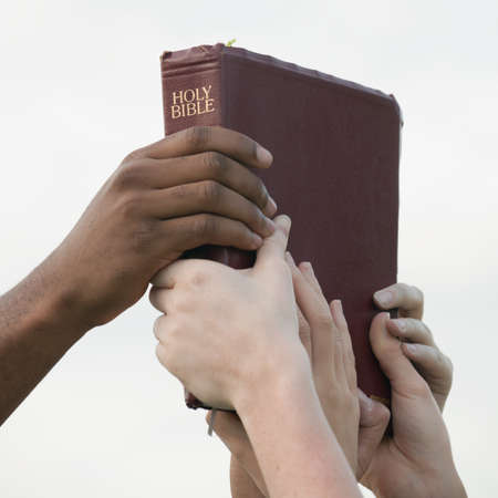 the scriptures: Interracial hands holding up a bible Stock Photo