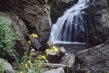 Cascading waterfall, Jemez Falls, with cutleaved coneflower (Rudbeckia laciniata), Jemez National Recreation Area, Jemez Mountains, New Mexico, USA Stock Photo