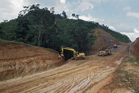 logging industry: Road construction through tropical rainforest, Belize Stock Photo