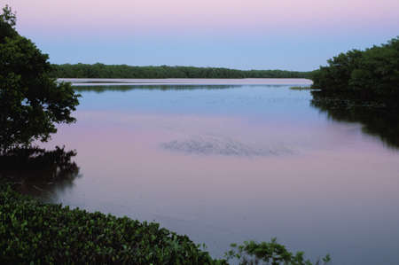 lake fronts: Twilight reflected in pond