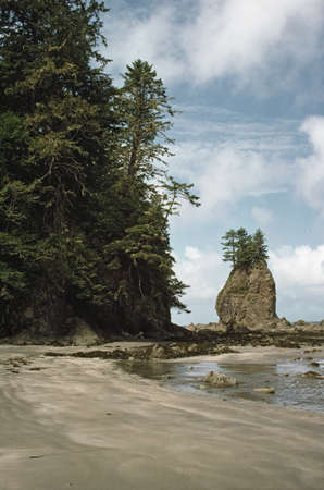 lakeshores: Rugged forested headlands along beach on the coast of the Olympic Peninsula, Washington, United States of America