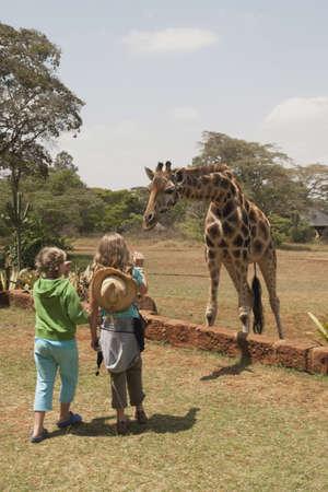 Children looking at Rothschild giraffe, Nairobi, Kenya, Africa