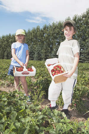 caucasian ancestry: Boy and girl holding baskets of strawberries