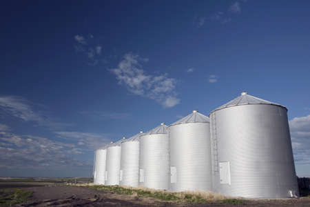 Row of metal silos photo