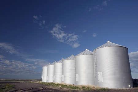 Row of metal silos photo
