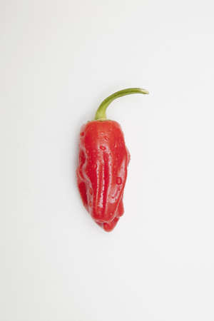 jalapeno pepper: a red jalapeno pepper that looks hot with steam