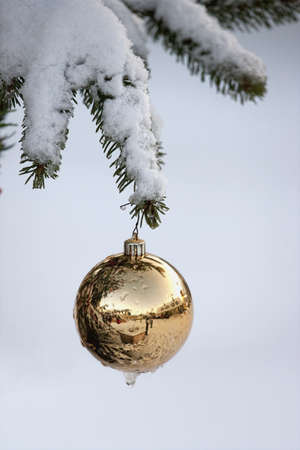 gold ball ornament hanging from a snowy tree branch