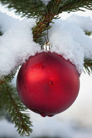 red ball ornament hanging from a snowy tree branch
