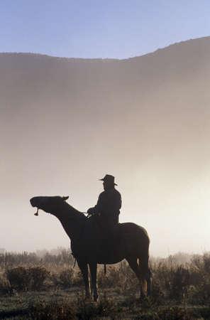 rancho: Silueta vaquero a caballo en la niebla