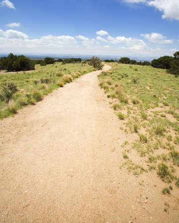raniszewski: Long winding trail