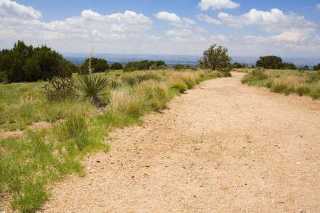 raniszewski: Winding dirt path