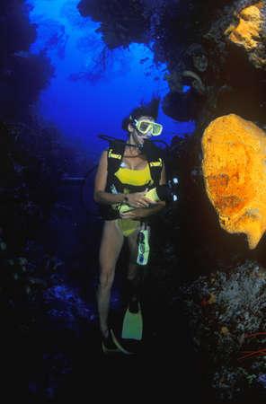 scuba woman: Woman scuba diving