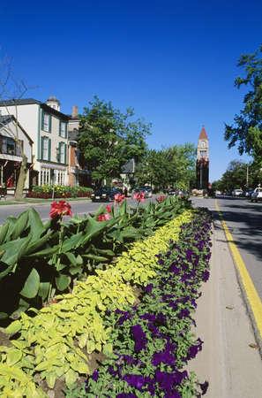 lake flowers: Main street