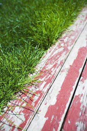raniszewski: Grass and painted boards