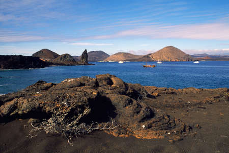 darwin: Galapagos Islands in Ecuador