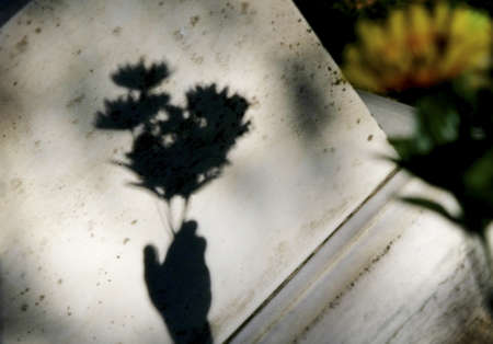 gravesite: Shadow of hand holding flowers by grave