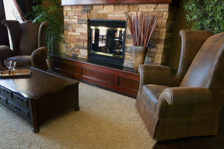 fireplaces: Interior of a living room