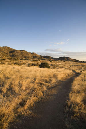 raniszewski: Path in high desert foothills