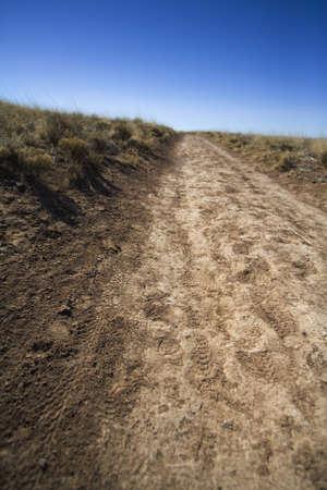 raniszewski: Dirt road