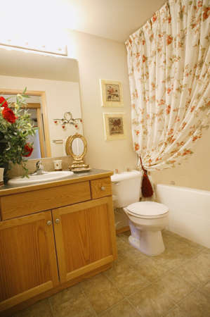 Bathroom in a home with shower, toilet and sink Stock Photo - 7200925