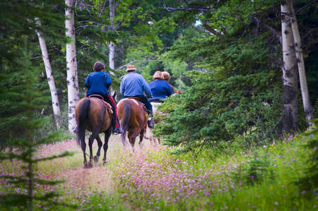 horse riding: People trail riding in forest