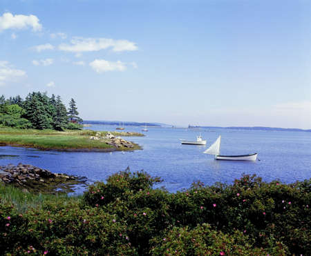 Boats in water, LaHave, Nova Scotia photo