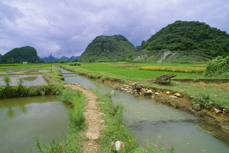 Rice fields and irrigation ditch in Yangshuo, Guanxi, China