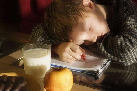 homelife: Boy sleeping on homework