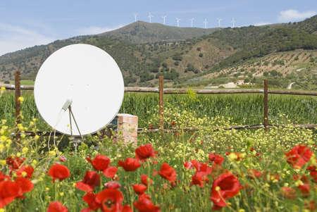 Poppy and Wild Flower Garden with Satellite dish in west of Álora, Malaga, Spain Stock Photo - 7200880