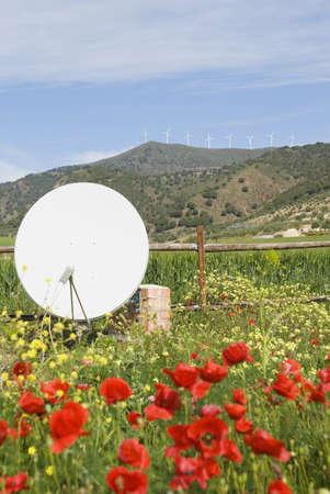 Poppy and wild flower garden with satellite dish West of Atildelora, Malaga, Spain