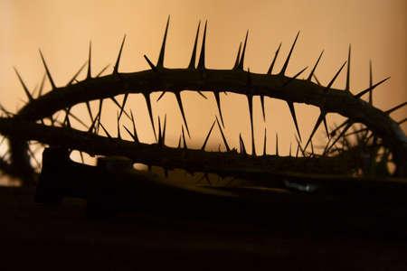 belief systems: Silhouette di una corona di spine