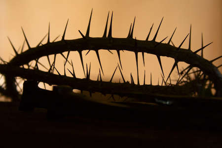 Silhouette of a crown of thorns photo
