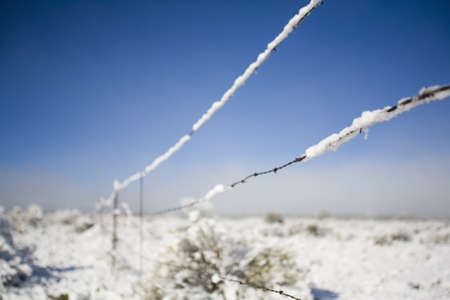 raniszewski: Barbed-wire fence in winter Stock Photo