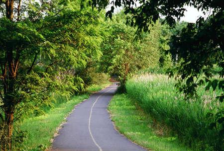 Pathway in een park