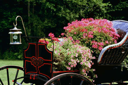 Old carriage with flowers in it Stock Photo - 7201105