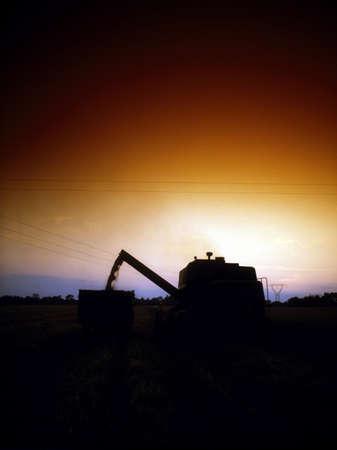 combine harvester: Cosechadora, co de Meath, Irlanda
