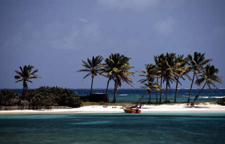 A beach in the West Indies photo