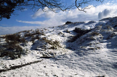 Longshaw Estate in winter, Derbyshire, England photo