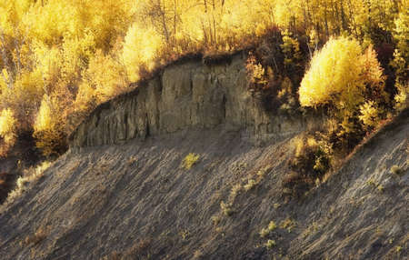 knorr: Autumn trees on a cliffs side Stock Photo